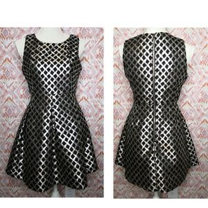 Hot & Delicious Medium Fit & Flare Dress Silver